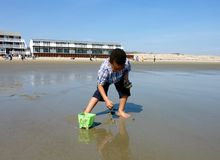 Beach Fun. A young boy gathers mud into his bucket to build a sandcastle Stock Photography