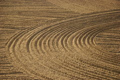 Beach furrows royalty free stock photography