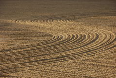 Beach furrows Stock Photo