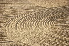 Beach furrows Royalty Free Stock Photos