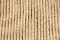 Beach furrows Royalty Free Stock Photo