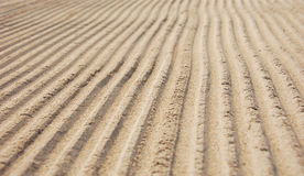Beach furrows Royalty Free Stock Images