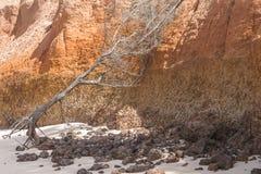 Beach in Gambia Stock Photo