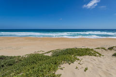 Beach at Garden Route, South Africa Royalty Free Stock Photography