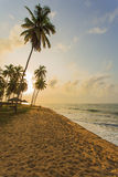 Beach in Ghana in the morning Royalty Free Stock Photos
