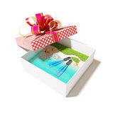 Beach in the gift box Stock Photo