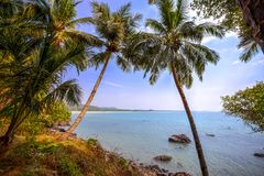 Beach in Goa, India Stock Images