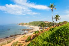 Beach in Goa, India. Vagator or Ozran beach with palms aerial panoramic view in north Goa, India royalty free stock photos