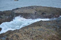 Indian ocean coast stock photography