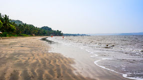 Beach in goa. Beach with sand and bordered by trees in Goa India Royalty Free Stock Photos