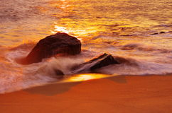 Beach with golden glow Royalty Free Stock Image
