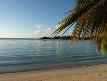 Beach Of Grand Baie Royalty Free Stock Photography