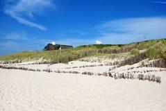 Beach grass. The Beach grass on Sylt Stock Photos