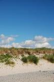 Beach grass. Sand and beach grass before blue sky Stock Photo