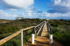 Beach grass Access Path Stock Photos