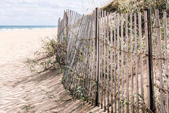 Beach Grass and Duens with Pickett Fence at Sandbridge Royalty Free Stock Image