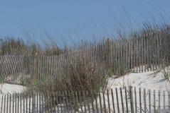 Beach Grass. Landscape along the North Carolina Beaches Royalty Free Stock Photos