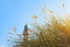 Beach Grass and Lighthouse in the Sunlight. Tuft of beach grass in the sunshine and a lighthouse tower at the side background Stock Image