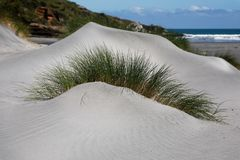 Sand dune with grass shaped like an eye brow stock images