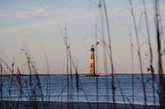 Beach grasses and reeds form a natural frame with the Morris Island Lighthouse in SC stock photography