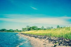 Beach with green fields and blue sky. Beach in Scandinavia with green fields and blue sky Royalty Free Stock Photo
