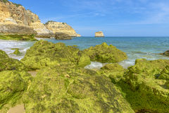 Beach with Green rocks. In Algarve, Portugal Royalty Free Stock Photo
