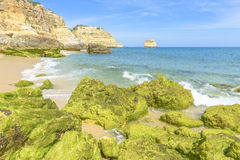 Beach with Green rocks. In Algarve, Portugal Royalty Free Stock Photos