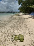 Beach on the guan stock image