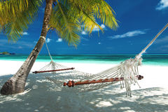 Beach hammock royalty free stock photos