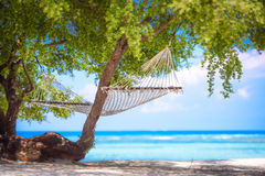 A beach hammock in the gili islands,bali 3 Stock Image