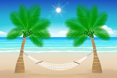 Beach With A Hammock Tropical Hanging From Palm TreesIllustration
