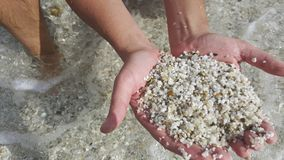 Beach.In the hands of small stones composed of colored grains of quartz Life cycle - Holiday. Beach.In the hands of small stones composed of colored grains of stock photos