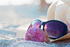 Beach hat and sunglasses Royalty Free Stock Images