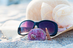 Beach hat and sunglasses Stock Photography