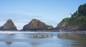 The Beach at Heceta Head. A clear day on the Oregon coast at the Heceta Head lighthouse, a popular tourist attraction stock images