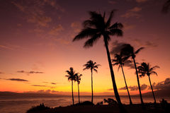 Beach Holiday. Tropical sunset on Maui in the middle of the Pacific Ocean Stock Image