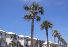 Beach Homes and Palm Trees. A row of beach cottages and palm trees stretch along highway 98 in destin florida Stock Photography