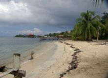 Beach in Honduras. Beautiful beach on the island of Roatan in Honduras, Central America Stock Image