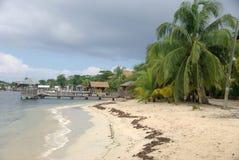 Beach in Honduras Royalty Free Stock Image