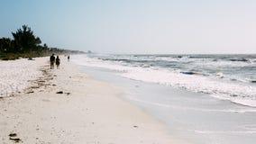 Beach, Horizon, Nature, Ocean Royalty Free Stock Photo