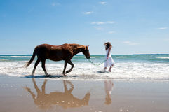 Beach horse. Girl excercising a chestnut pony at the beach in summertime in New Zealand Royalty Free Stock Photo