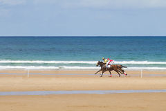 Beach horse race. Two horses with jockeys racing on the beach in front of the ocean Stock Image