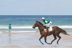 Beach horse racer. Horse with jockey running on the beach in front of the ocean Royalty Free Stock Photos
