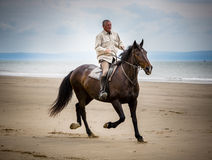 Beach horse rider. Equestrian sport: A brown active horse with rider galloping in the water on the beach in summer Stock Images