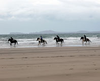 Beach Horse Riding Stock Photography