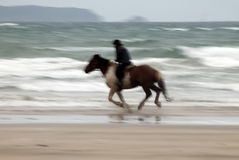Beach Horse Riding Stock Photos