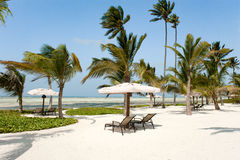 Beach of Hotel Baraza Resort, Zanzibar Royalty Free Stock Photography
