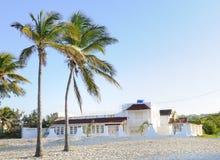 Beach house. House on tropical beach with coconut palm trees Stock Image