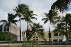 Beach houses in Florida. Beach house and palm trees in Florida Royalty Free Stock Photo