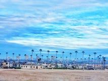 Beach houses /palm trees royalty free stock photo